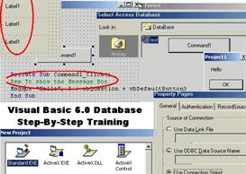 Microsoft Visual Basic 6.0 Database Programming Training Program For D | Software | Training