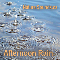 Afternoon Rain Relaxation | Music | New Age