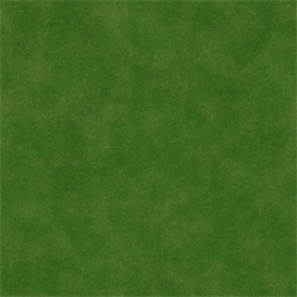 natural grass texture set r2048