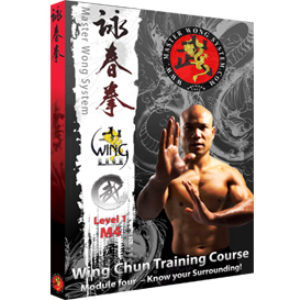 sil lim tao full course