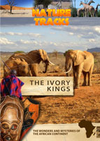 Nature Tracks - The Ivory Kings | Movies and Videos | Documentary