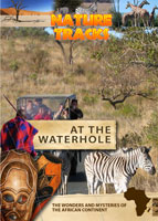 Nature Tracks - At the Waterhole | Movies and Videos | Documentary