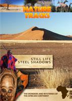 nature tracks - still life - steel shadows