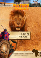 nature tracks - lion heart