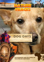 Nature Tracks - Dog Days | Movies and Videos | Documentary