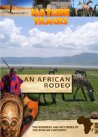 nature tracks - an african rodeo