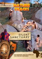 nature tracks - silent sanctuary