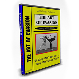 the art of evasion
