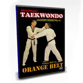 taekwondo-orange belt requirements-by adam gibson