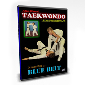 taekwondo-blue belt requirements-by adam gibson