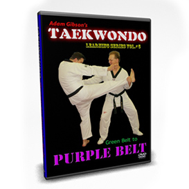 taekwondo-purple belt requirements-by adam gibson