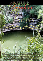 nature wonders cenotes mexico