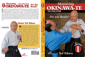 mastering okinawa-te vol-1 download