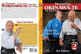 mastering okinawa-te vol-2 download