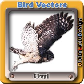 owl vectorpack1