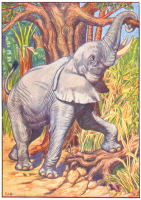 elephant print from 1906 child's animal book