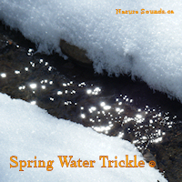 Spring Water Trickle 2 Hour | Music | Ambient