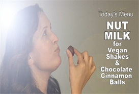 vegan witch -301-nut milk, shakes & chocolate cinnamon balls