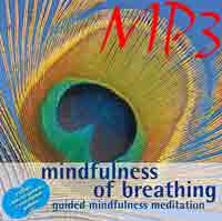 shorter minimal guided mindfulness of breathing