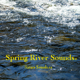 spring river sounds