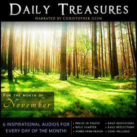 daily treasures 11