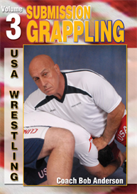 submission grappling vol-3 video download