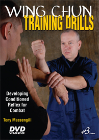 wing chun training drills - video download