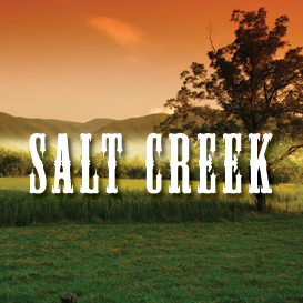 Salt Creek Full Tempo Backing Track | Music | Acoustic
