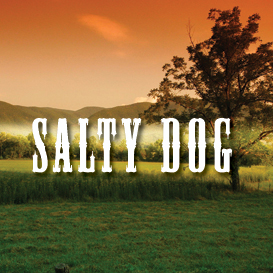 Salty Dog Backing Track | Music | Acoustic