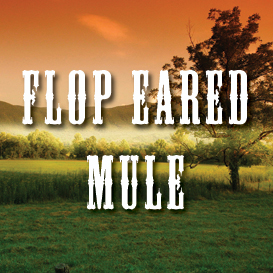Flop Eared Mule Full Tempo Backing Track | Music | Acoustic