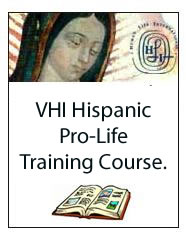 "MODULE 1: SEX ""EDUCATION"" VS. CHASTITY FORMATION  - VHI Hispanic Pro-Life Training Course. 