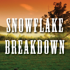 Snowflake Breakdown Full Tempo Backing Track   Music   Acoustic