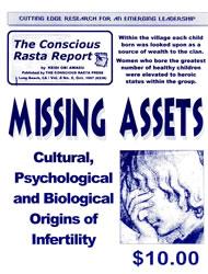 MISSING ASSETS: Cultural, Psychological and Biological Origins of Infertility | eBooks | Social Science
