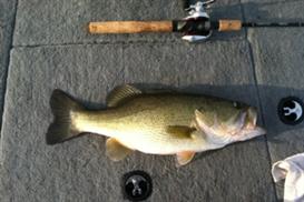 fishing log