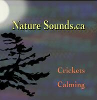 crickets calming full length download