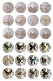 A Dozen Promo wButterfly Kisses | eBooks | Arts and Crafts