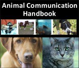 animal communication handbook