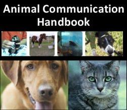 Animal Communication Handbook | eBooks | Pets