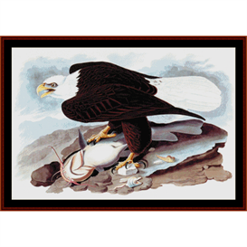 american bald eagle -wildlife cross stitch pattern by cross stitch collectibles