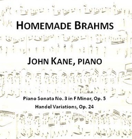 homemade brahms sonata no. 3 i