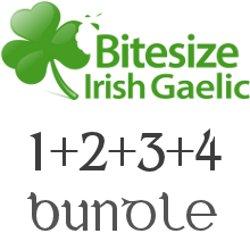 Bitesize Irish Gaelic Audio Program - 4-Pack Bundle | Audio Books | Languages