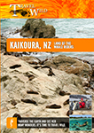 travel wild kaikoura new zealand land of the whale riders