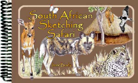 south african sketching safari