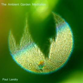 the ambient garden meditation