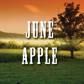 june apple full tempo backing track