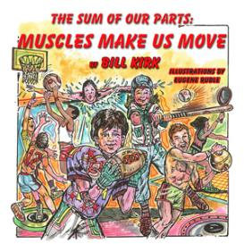 muscles make us move