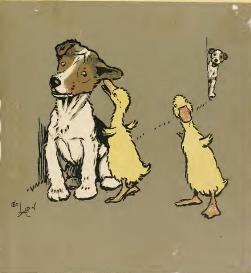 cecil aldin artist & illustrator lovely animal & rural drawings books in pdf