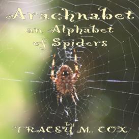 arachnabet: an alphabet of spiders