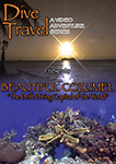 dive travel beautiful cozumel - the drift diving capital of the world