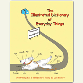 the illustrated dictionary of everyday things